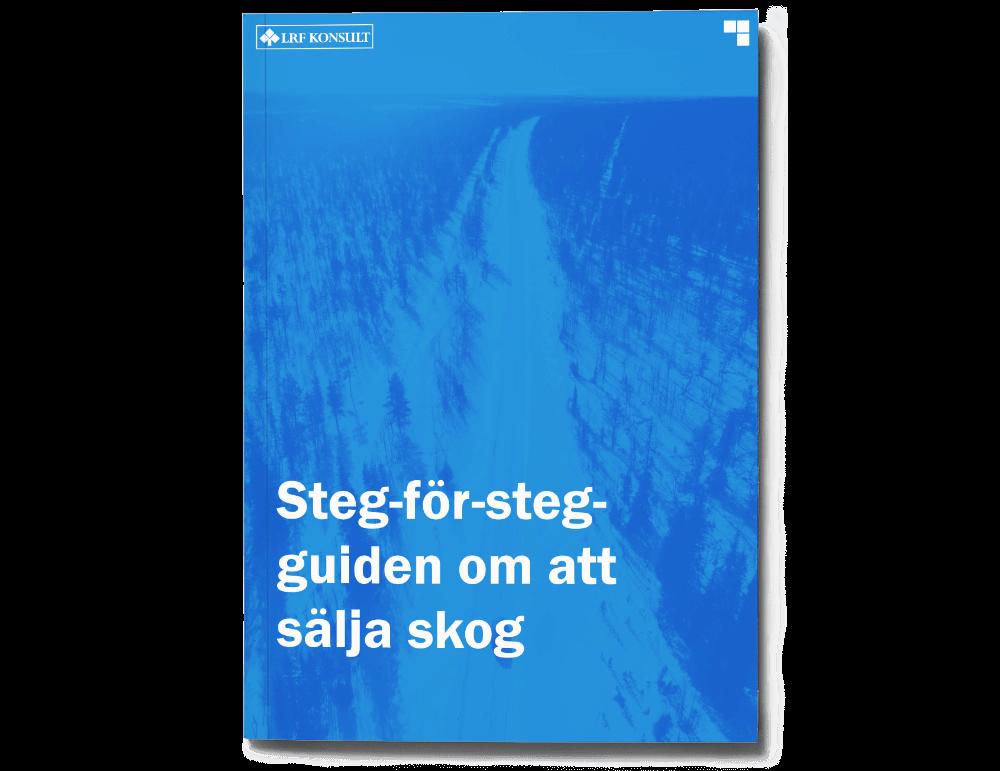Steg-för-steg-guiden om att sälja skog
